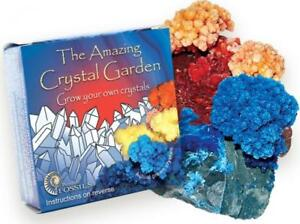 Amazing Crystal Garden Grow Your Own Crystals Educational Scientific Growing Kit