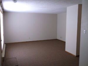 For Rent - Spacious One Bedroom Suite