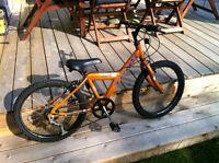 "Mountain Bike 20"" Kids Trax Super Street"