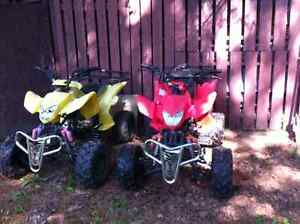 2 for 1 Four Wheelers