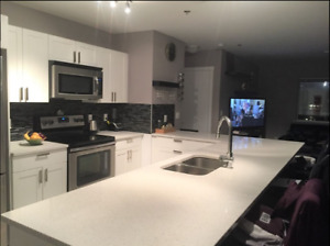 Furnished modern 2-Bedroom condo, downtown, heated parking