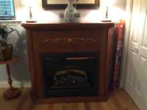 Fireplace with storage compartments