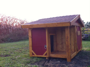 Lg - ALL Weather Dog House! Warranty Included! London Ontario image 2