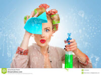 SPARKLING   SHINE    -   PERFECT CLEAN  - HOUSEKEEPING SERVICE