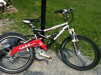 Infinity Adult mountain bike