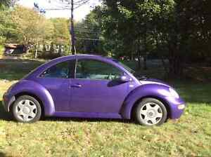 PUNCH BUGGY TURBO! DRIVE THE CUTEST CAR EVER!!Flower Included