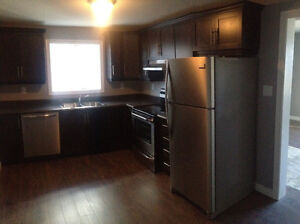 Large above ground two bedroom basement apartment