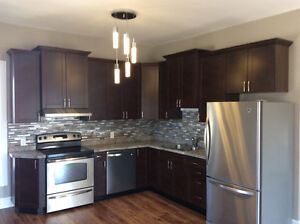**Beautifully newly renovated upper level 2 bedroom apartment**