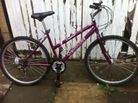 "Girls / ladies bike 17"" frame"