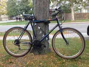 Fig's bikes - Raleigh 18 speed