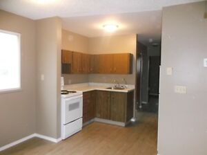 One Bedroom Suite for Rent in Yellow Grass--15 Mins from Weyburn