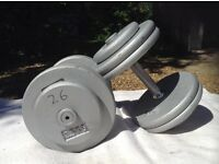 2 x 26kg Silver Cast Iron Dumbbell Weights