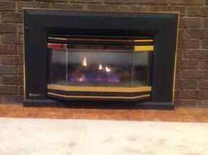 Regency natural gas fireplace