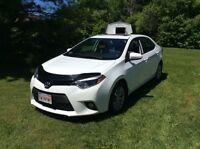 2014 Toyota Corolla LE, Lease take over