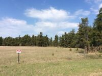 Country residential acreage 5 min from Nipawin