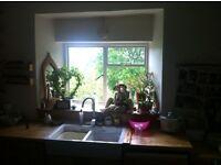 Beautiful 2 bedroom Apartment for rent in Dartington, Totnes
