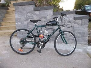 motorized raliegh bicycle