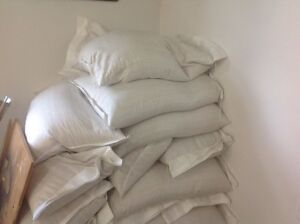 CLEAN BAGGED OATS FOR SALE