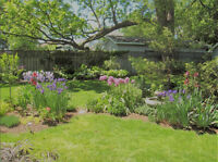 Schaaf Property Maintenance; Affordable Gardening/Lawn Service