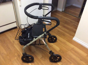 Evolution Piper Walker - $250.00 (Lynn Valley) North Shore Greater Vancouver Area image 2