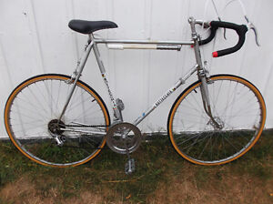 XLarge Vintage Bottecchia 10spd Roadbike 66cm(Campy Equipped)