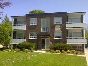 Gorgeous 2 Bdrm Suite On Mature, Quiet Street Close To Amenities