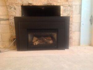 Fireplace insert natural gas