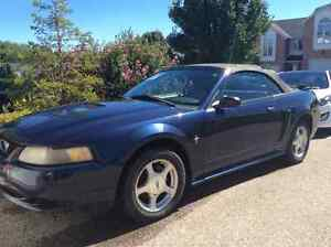 2001 Ford Mustang Convertible - New Tires, Rust Free! Kitchener / Waterloo Kitchener Area image 1