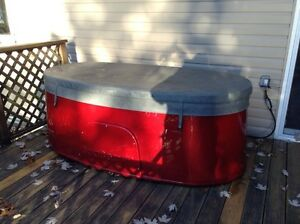 Spaberry hot tub - 2 person