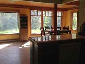 Home for sale on acreage, in the beautiful Slocan Valley.