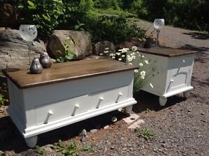 Table à café (coffre) et meuble de salon relookés