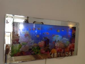 Glass & Mirror Fish Tank