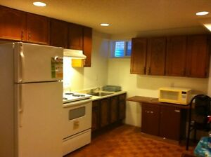 1 Bedroom Basement @ Lawrence and orton park area
