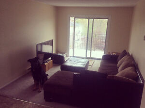 LF Loyalist student for roommate, 5 minute bus ride to campus