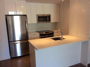 Spacious 3 1/2 condo unit close to Concordia from Sept 1st