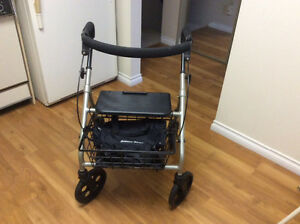 Evolution Piper Walker - $250.00 (Lynn Valley)