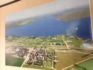 Diefenbaker  Lake   lot Elbow- for sale