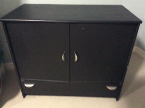 2 Door Wooden Cabinet with Bottom Drawer