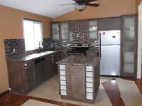 Doors, cabinets and counter tops.