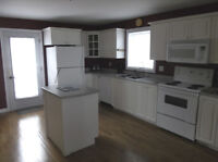 Beautiful Large One Bedroom In Law Suite Available November 1st