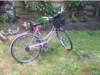Vintage Raleigh Adult Bike