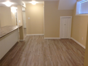 Clean, reno'd 2 bed + den bsmt suite with d/w, f/s, in-suite w/d