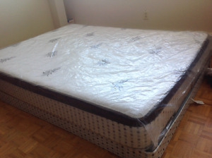 Aloe Vera bed in pristine condition! 500 OBO priced to sell!!!