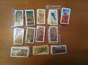 Lot of 625 Booke Bond Foods Ltd Vintage Collectible Cards