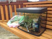 Aquarium fish tank £75