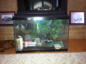 20 Gallon fish tank with accessories