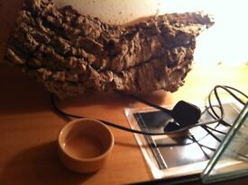 Two foot Viv with light heat mat and bowl