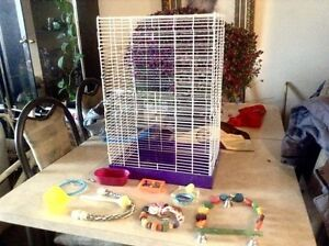 Bird cage with accessories!