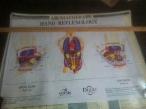 Hand and foot reflexology posters  Prince George British Columbia image 6