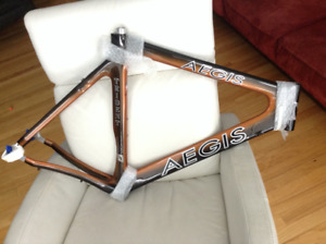 Aegis Trident Carbon Frame NEW L/XL